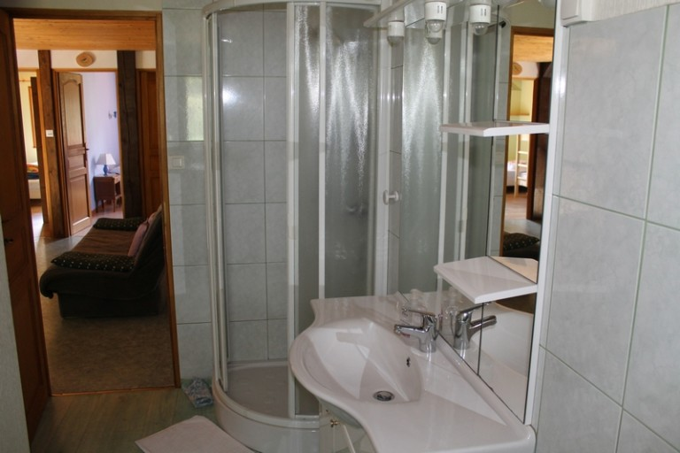 Salle de bain avec grande douche